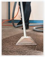 Los Angeles Carpet Cleaners Carpet Cleaning Los Angels